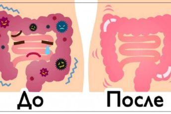 Эти 2 ингредиента просто смоют килограммы отходов из кишечника!